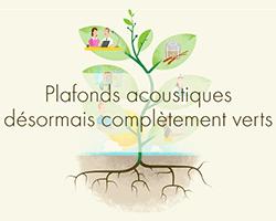 plafonds-acoustiques-verts
